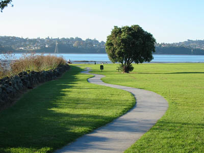 Click here for Manukau Harbour images