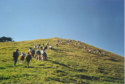 Click here for Mangere Mountain images